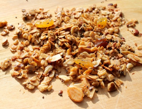 Granola with bush ingredients